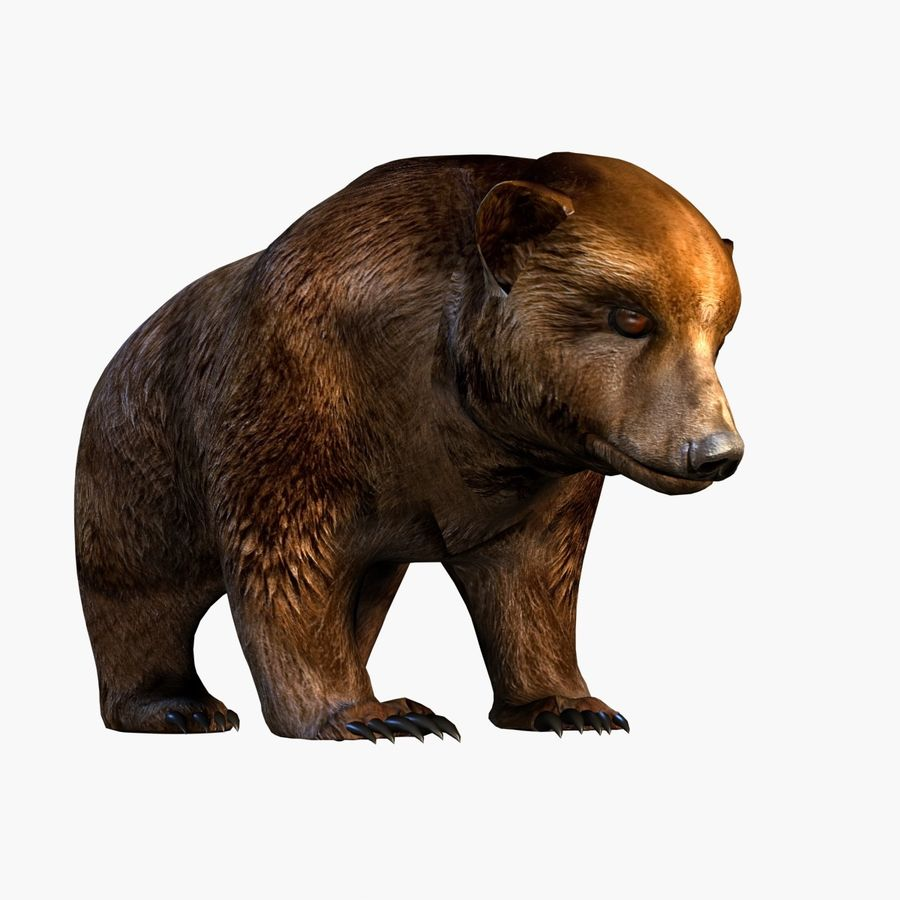 Bear royalty-free 3d model - Preview no. 6