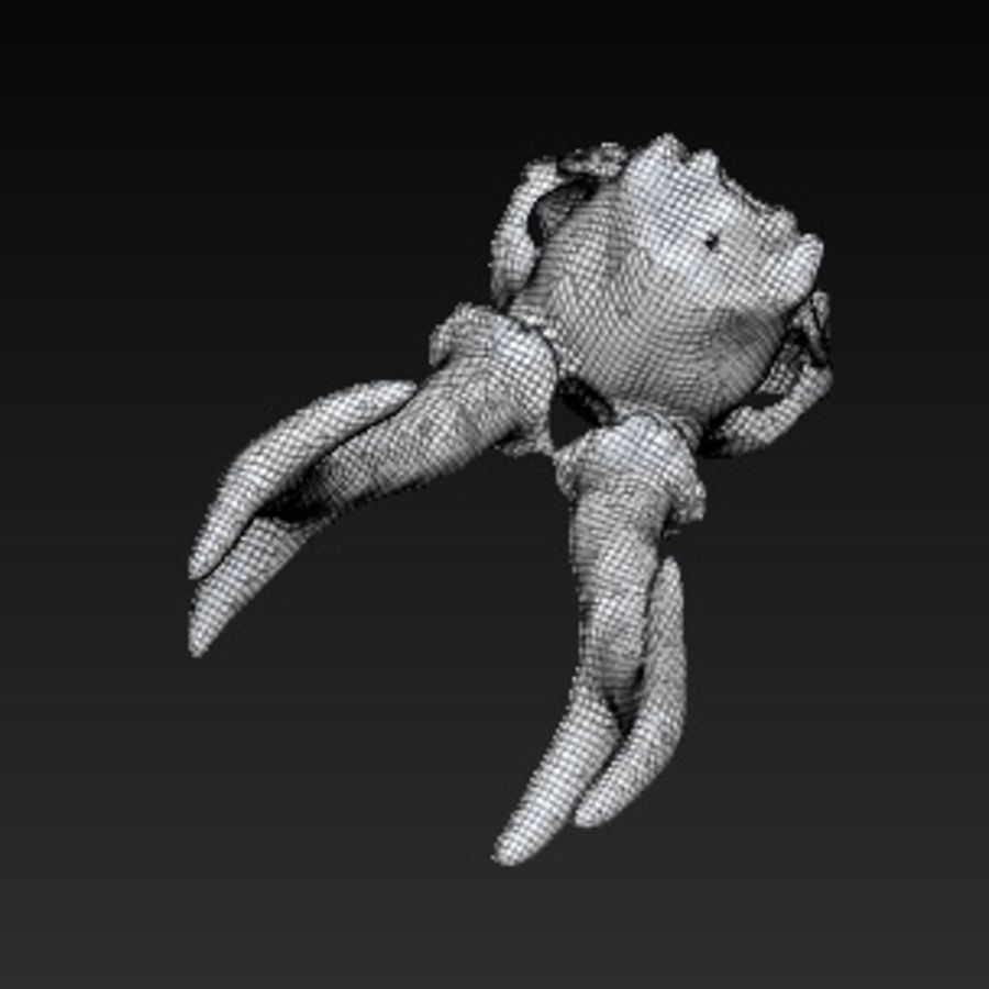 czaszka zwierząt royalty-free 3d model - Preview no. 5