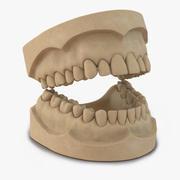 歯科用モールド 3d model