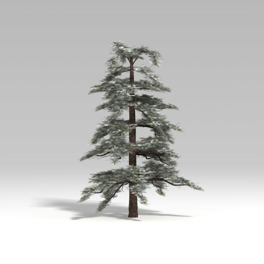 Snowtree V4 royalty-free 3d model - Preview no. 4