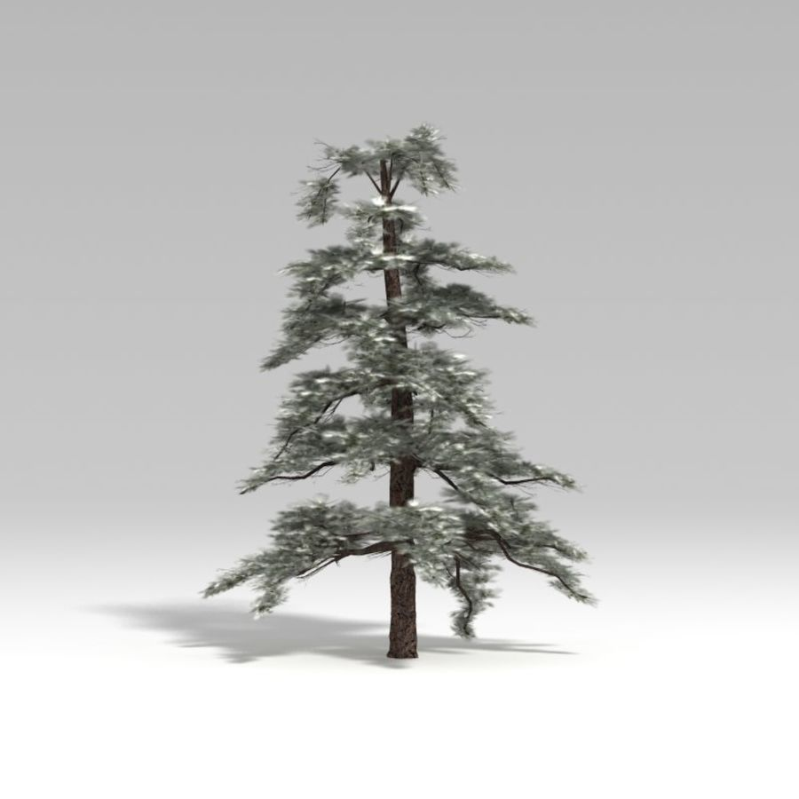 Snowtree V4 royalty-free 3d model - Preview no. 5