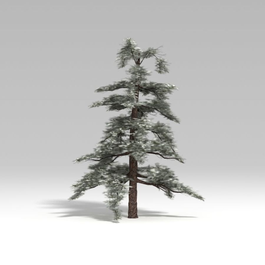 Snowtree V4 royalty-free 3d model - Preview no. 2