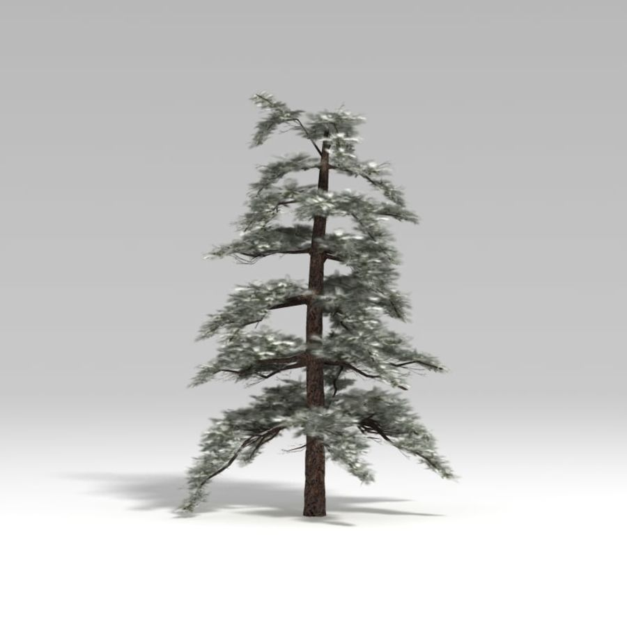 Snowtree V4 royalty-free 3d model - Preview no. 3