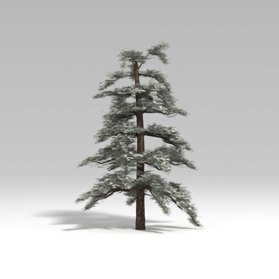 Snowtree V4 royalty-free 3d model - Preview no. 6
