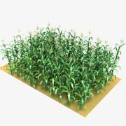 Corn Field Mid-Lowpoly 3d model