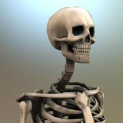 Gameready Lowpoly Skeleton 3d model