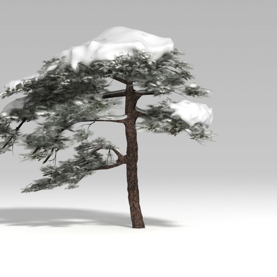 snowtree V1 royalty-free 3d model - Preview no. 4