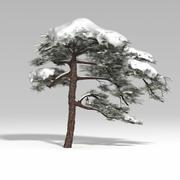 snowtree V1 3d model
