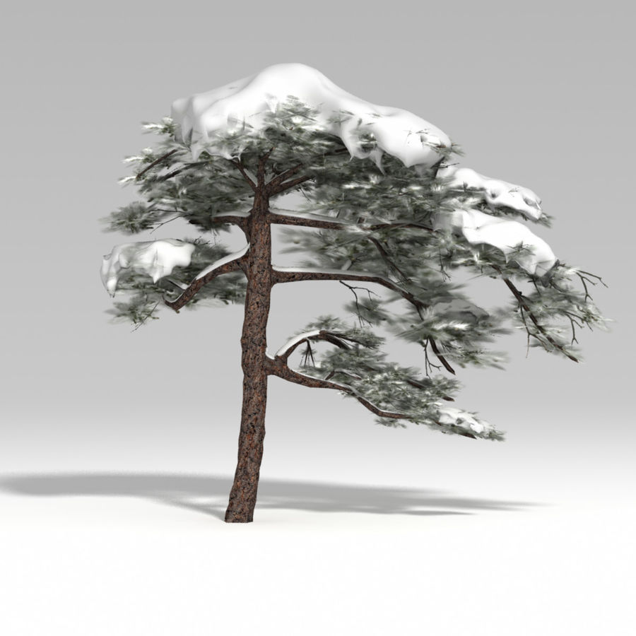 snowtree V1 royalty-free 3d model - Preview no. 1