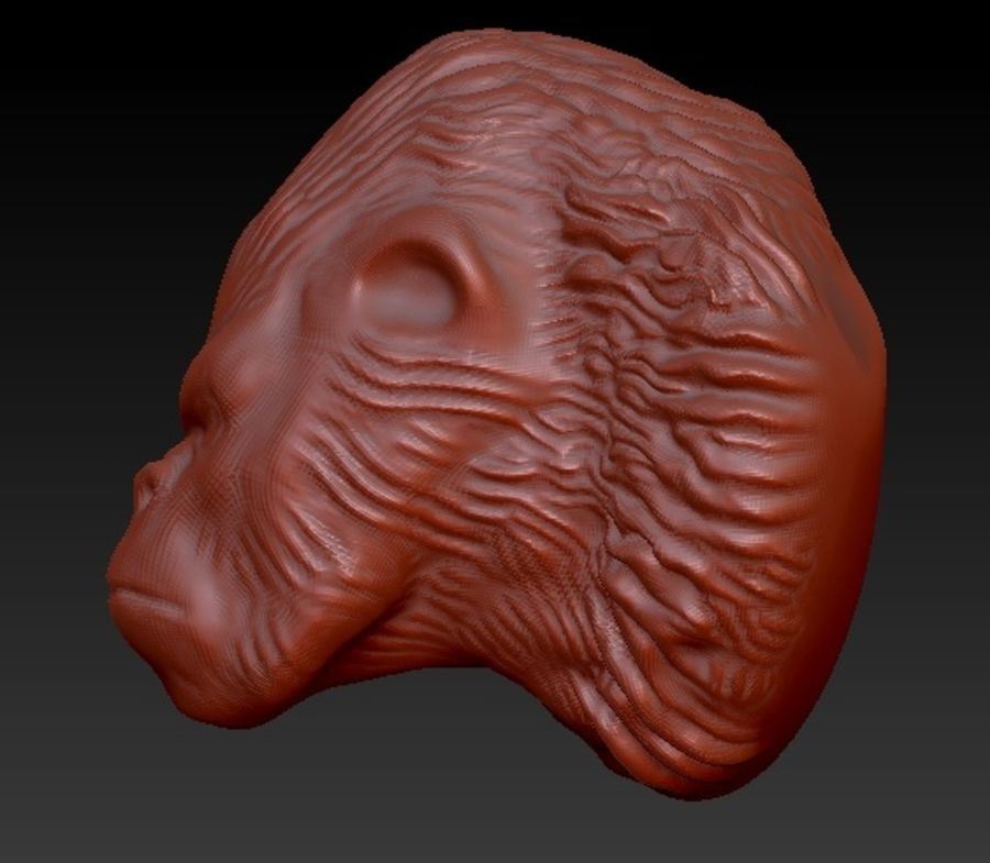 Gorilla head royalty-free 3d model - Preview no. 4