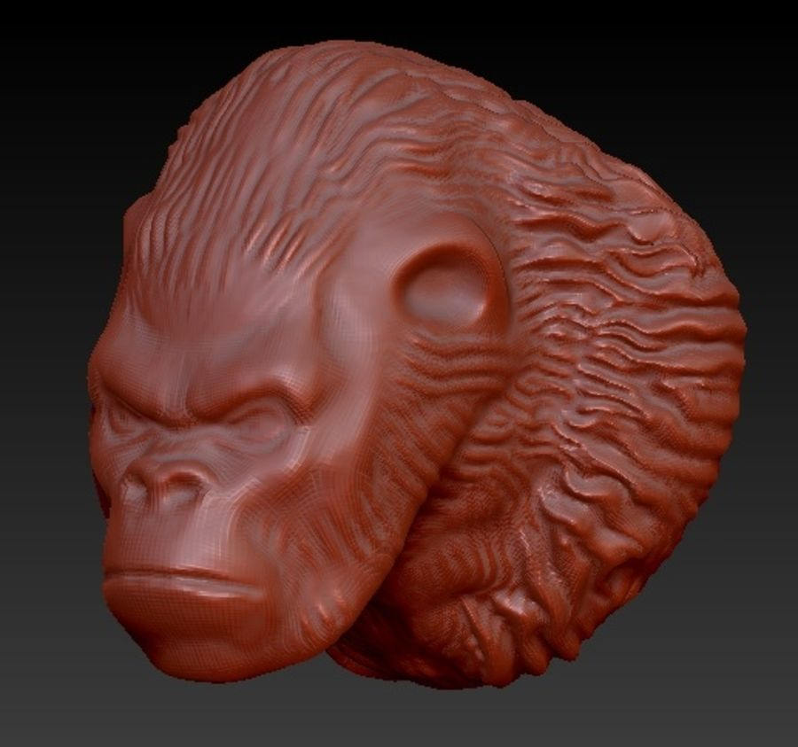 Gorilla head royalty-free 3d model - Preview no. 3