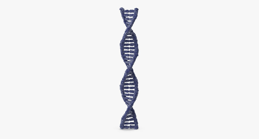 DNA royalty-free 3d model - Preview no. 3