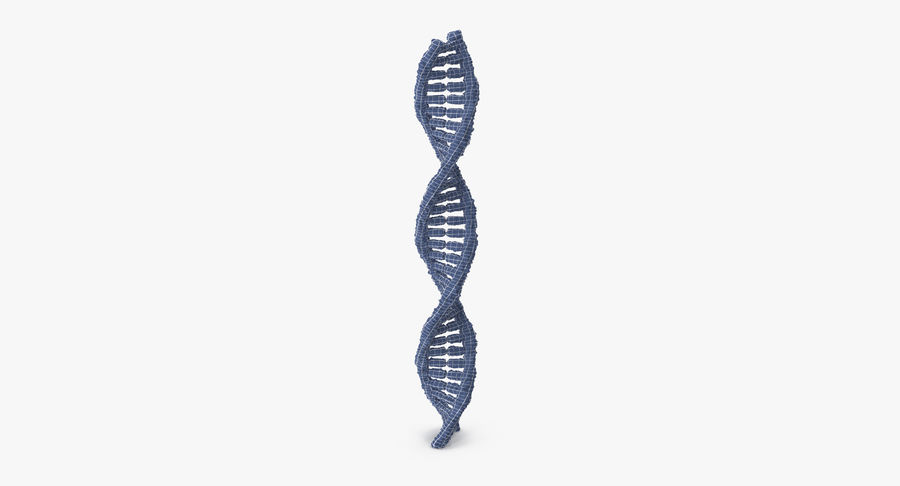 DNA royalty-free 3d model - Preview no. 16