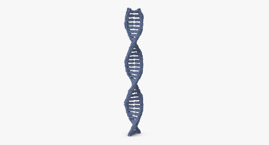 DNA royalty-free 3d model - Preview no. 11