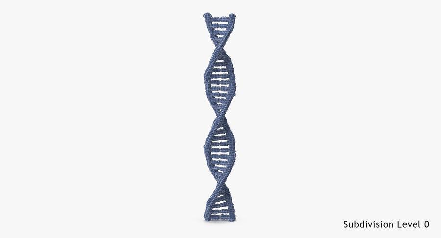 DNA royalty-free 3d model - Preview no. 17