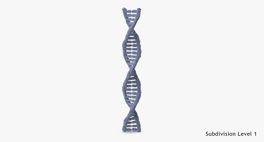DNA royalty-free 3d model - Preview no. 18