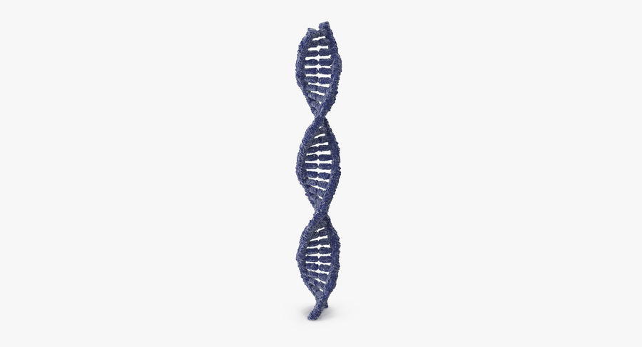 DNA royalty-free 3d model - Preview no. 9