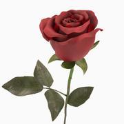 玫瑰 3d model