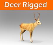 鹿の装備 3d model