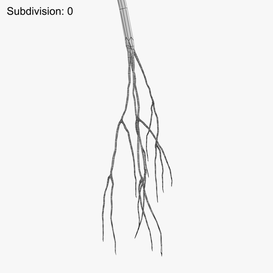 Plant Test Tube royalty-free 3d model - Preview no. 11