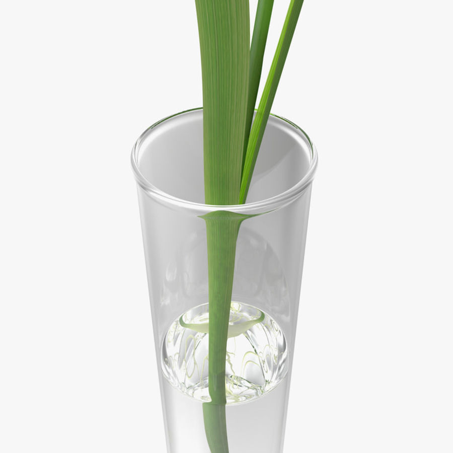 Plant Test Tube royalty-free 3d model - Preview no. 5