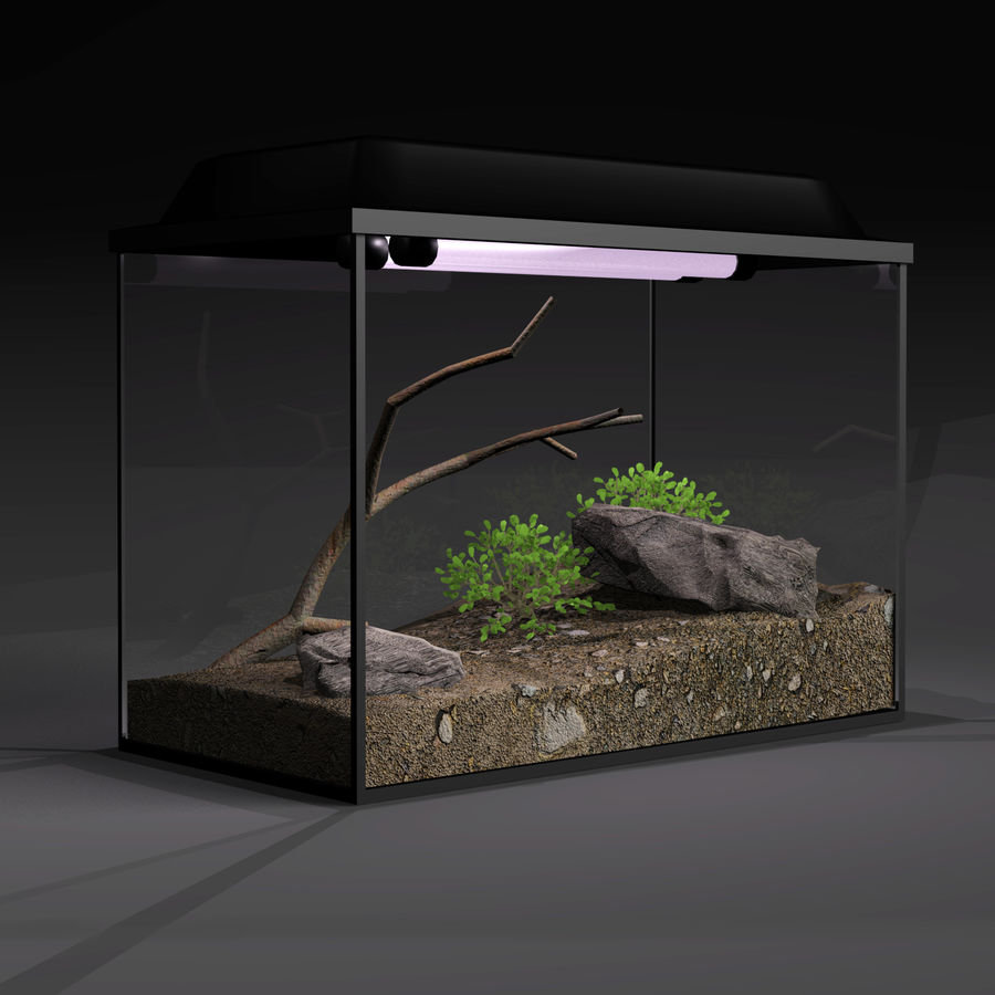 水族馆 royalty-free 3d model - Preview no. 3