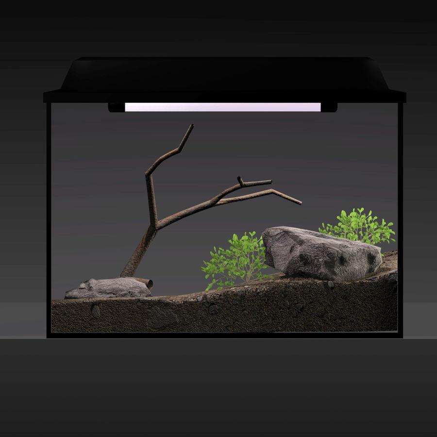水族馆 royalty-free 3d model - Preview no. 5