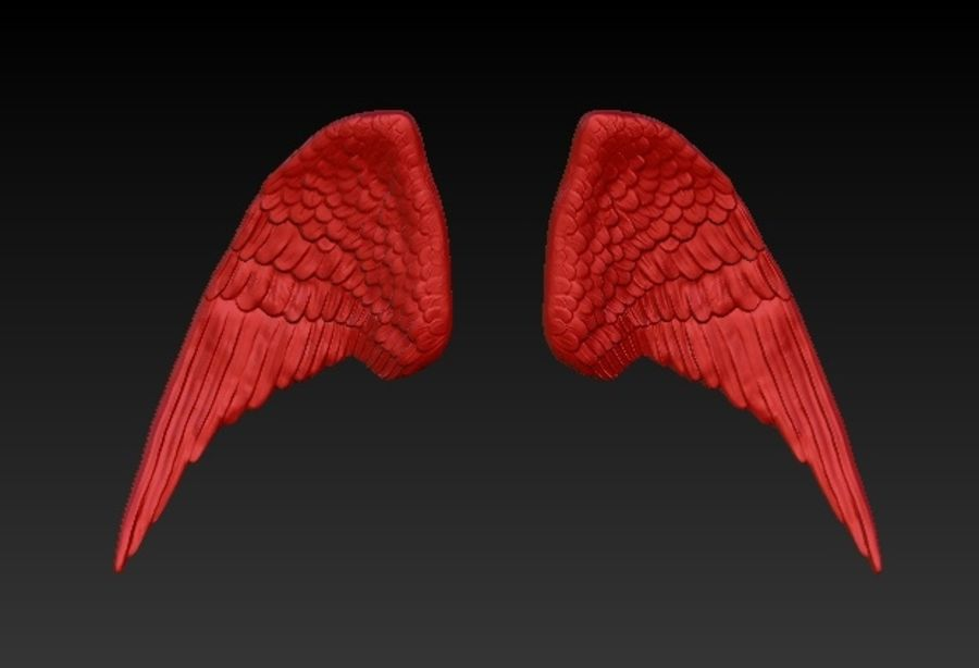 WINGS PAIR royalty-free 3d model - Preview no. 1