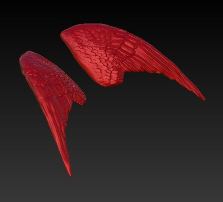 WINGS PAIR royalty-free 3d model - Preview no. 3