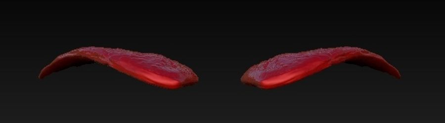 WINGS PAIR royalty-free 3d model - Preview no. 4