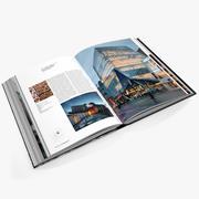 Ouvrir book_002 3d model