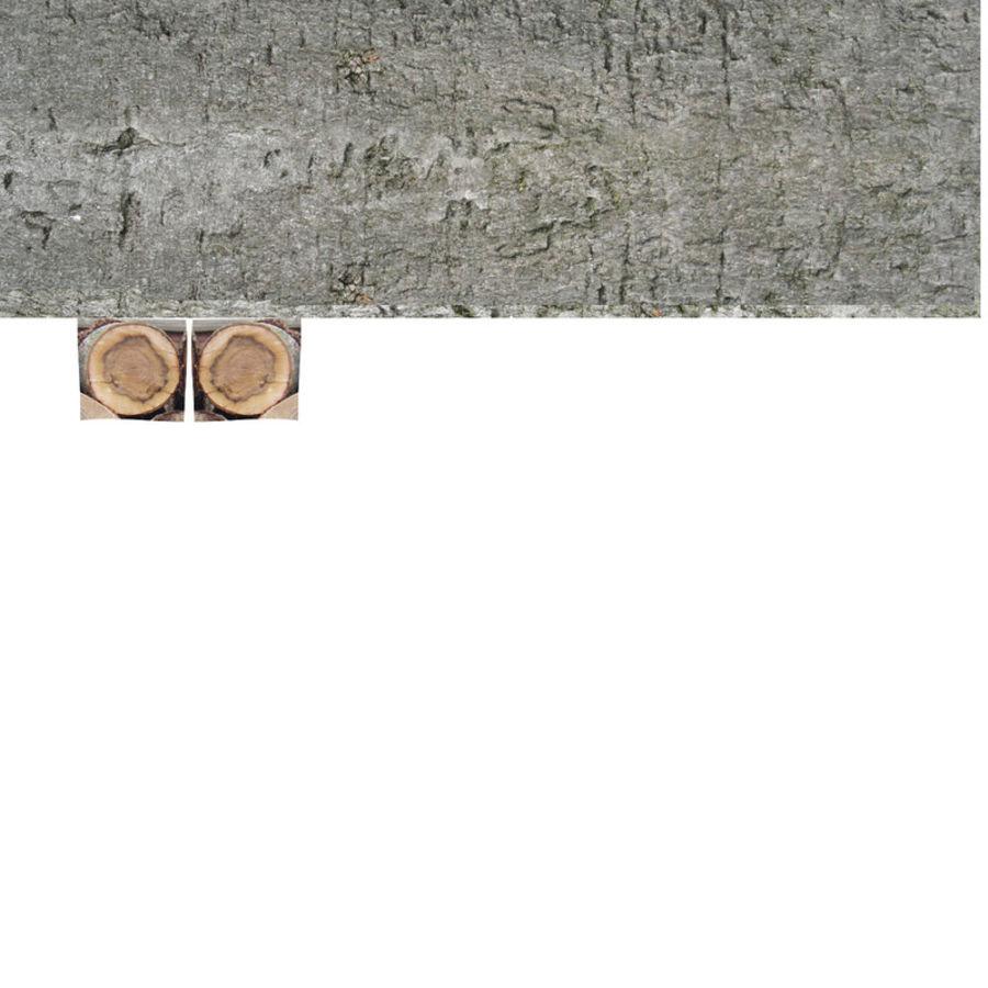 conjunto de toras de madeira royalty-free 3d model - Preview no. 29