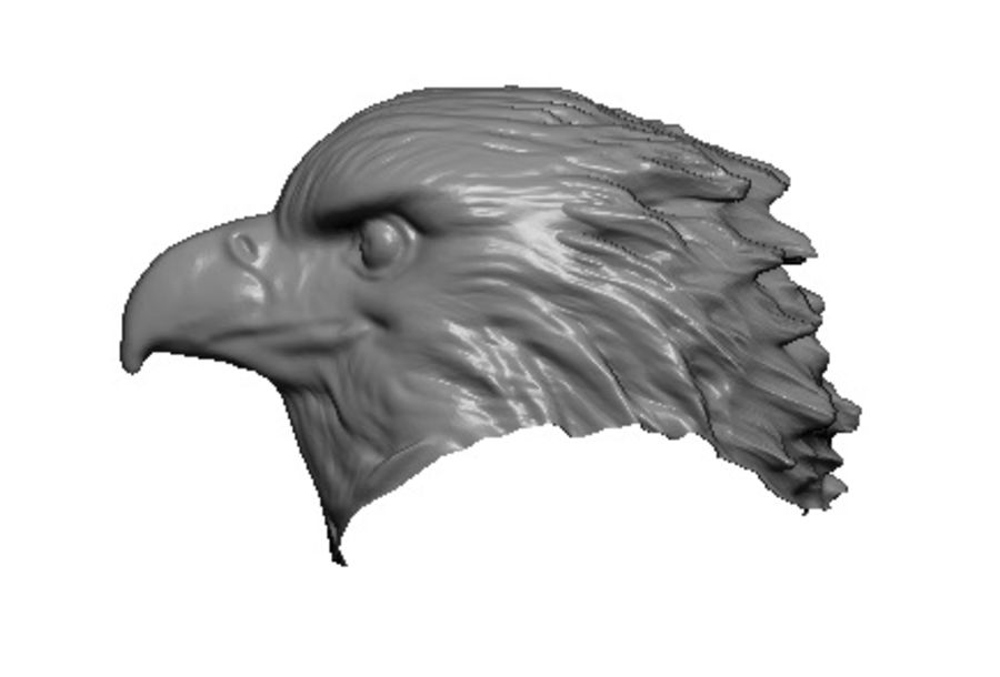 Eagle head royalty-free 3d model - Preview no. 3