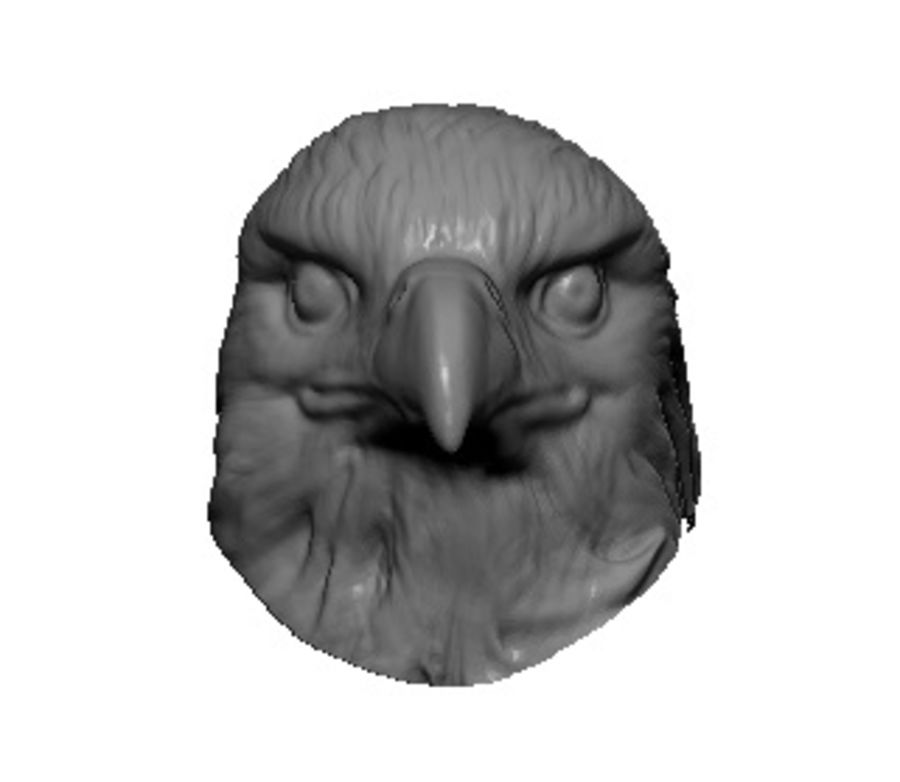 Eagle head royalty-free 3d model - Preview no. 2