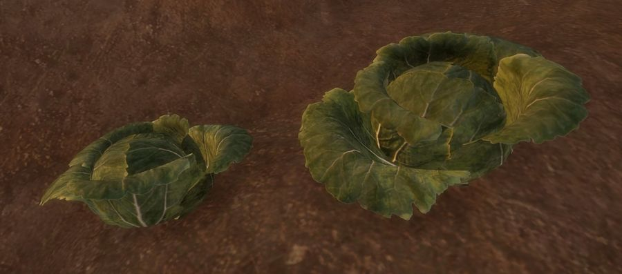 Cabbage royalty-free 3d model - Preview no. 6