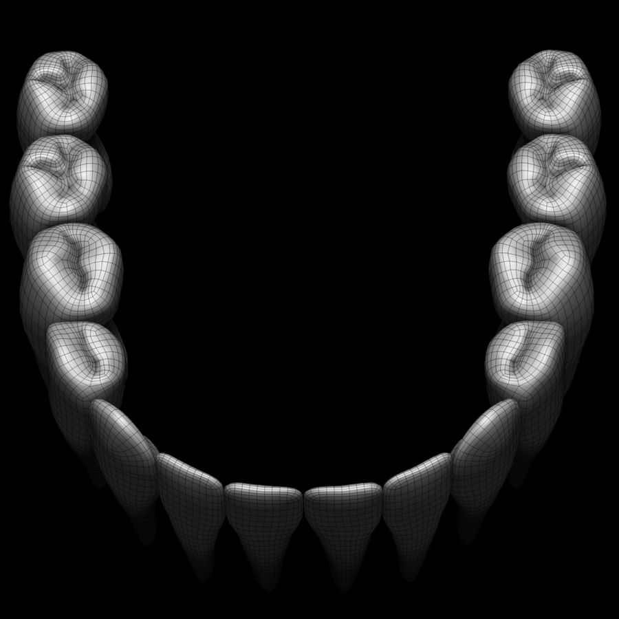 Teeth royalty-free 3d model - Preview no. 16