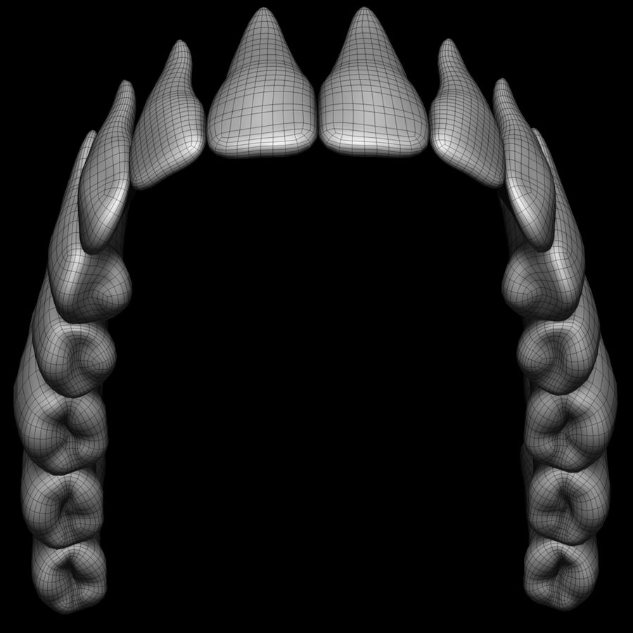 Teeth royalty-free 3d model - Preview no. 14