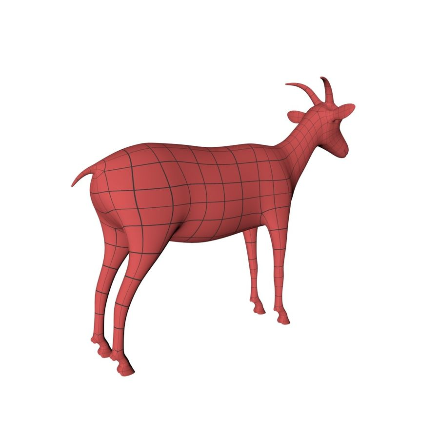 Goat base mesh royalty-free 3d model - Preview no. 6