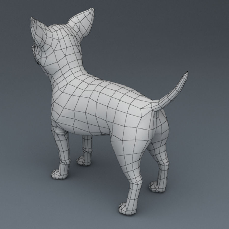 Chihuahua Rigged royalty-free 3d model - Preview no. 8