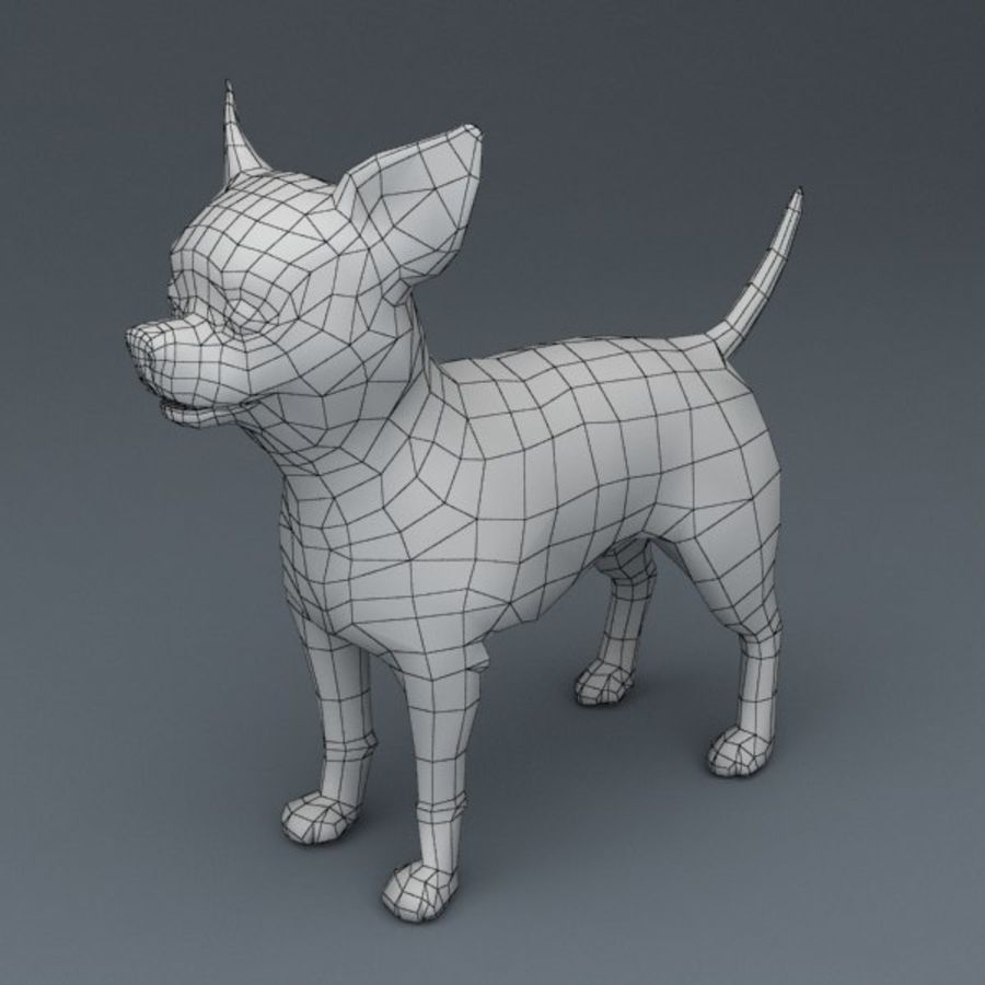 Chihuahua Rigged royalty-free 3d model - Preview no. 7
