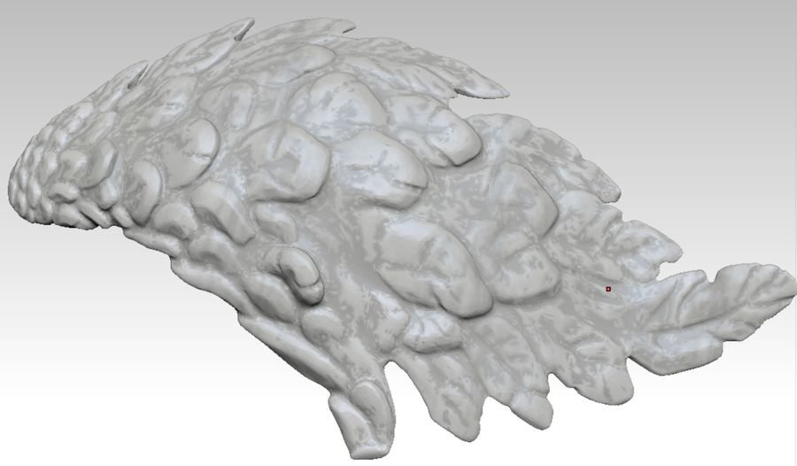 Bird / Angel / Eagle / Animal Wing royalty-free 3d model - Preview no. 6