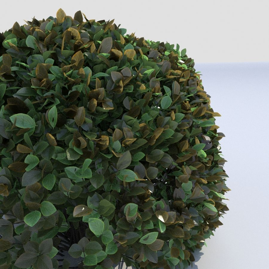 Round Hedge (3 items) royalty-free 3d model - Preview no. 4