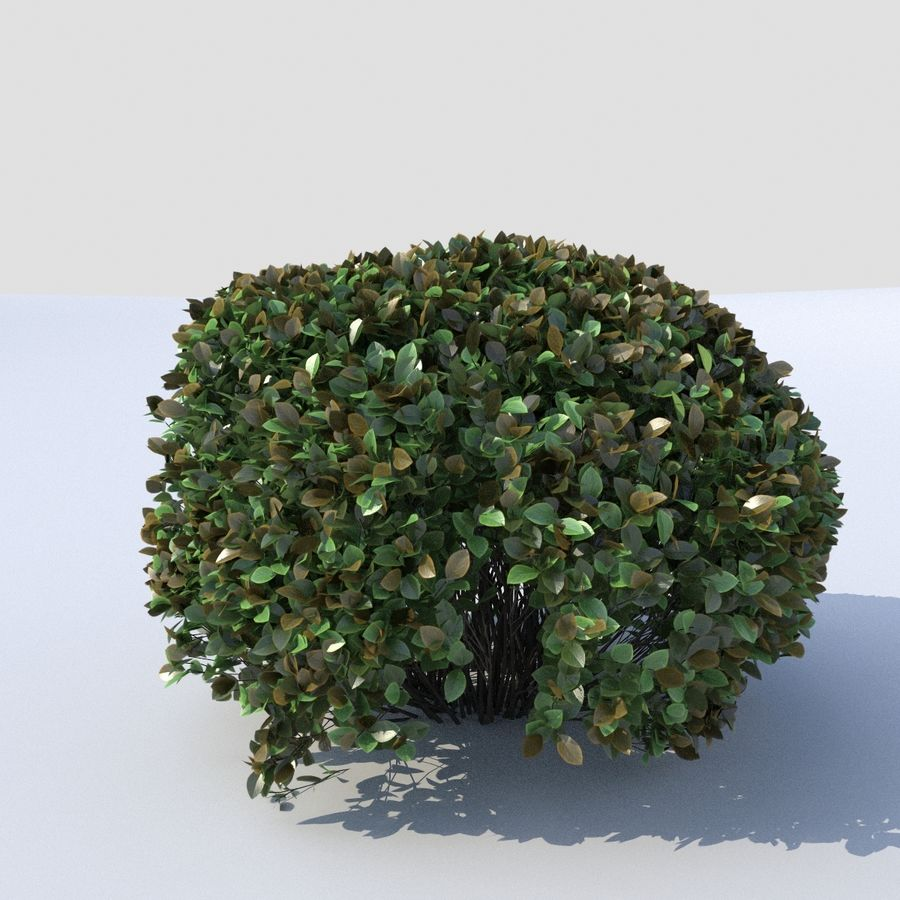 Round Hedge (3 items) royalty-free 3d model - Preview no. 1