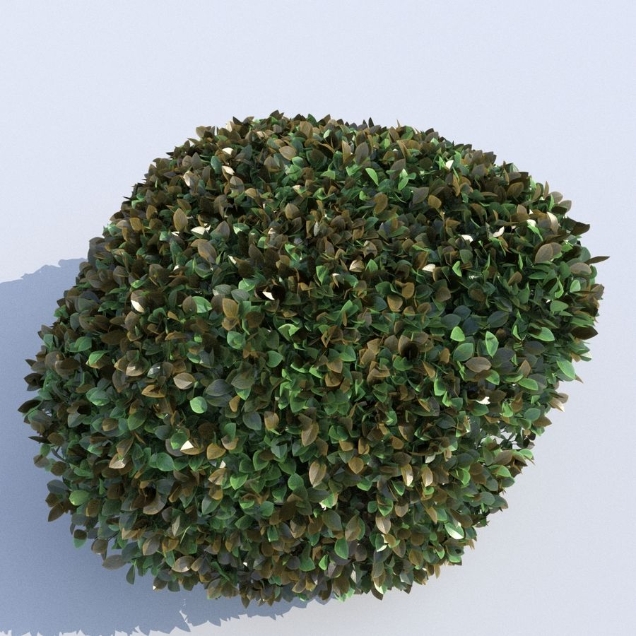Round Hedge (3 items) royalty-free 3d model - Preview no. 6