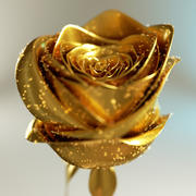 Golden Rose 3d model