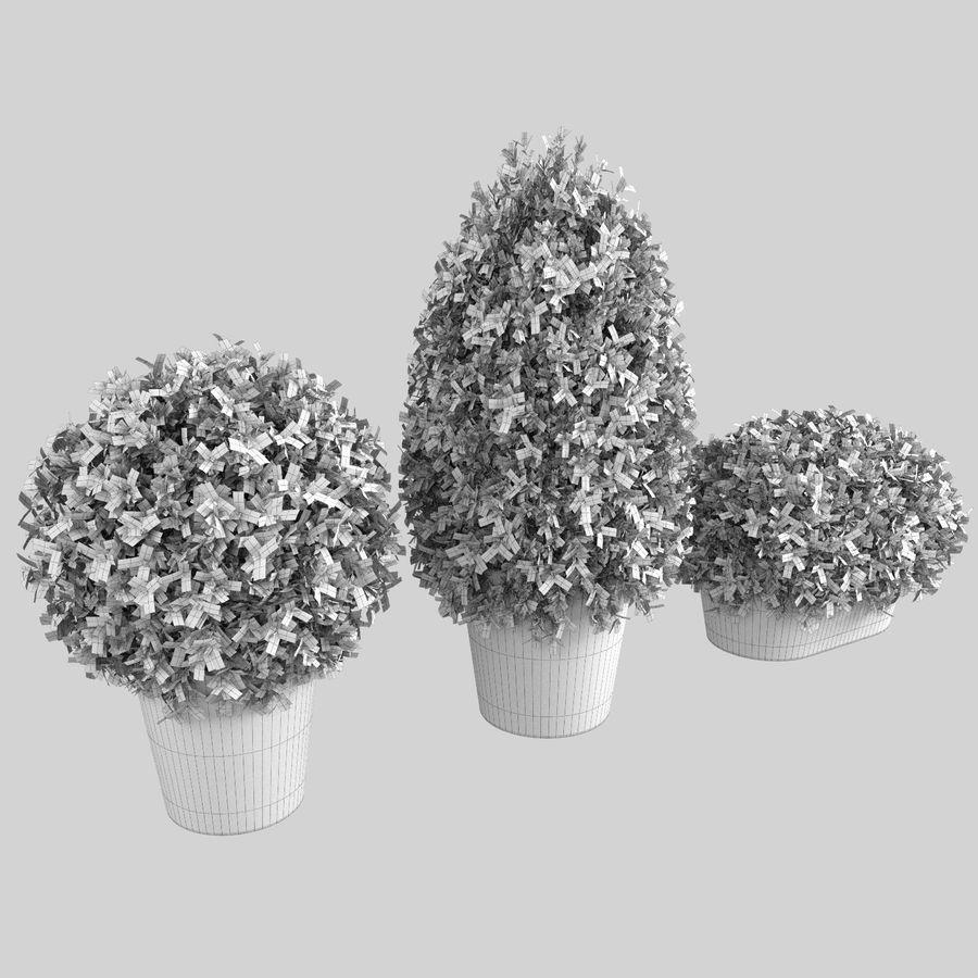 Plantas para interior y exterior royalty-free modelo 3d - Preview no. 10