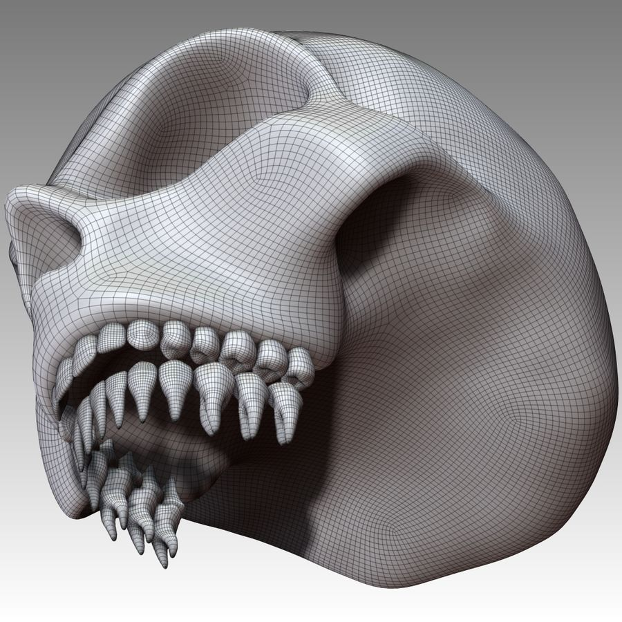 Skull royalty-free 3d model - Preview no. 13