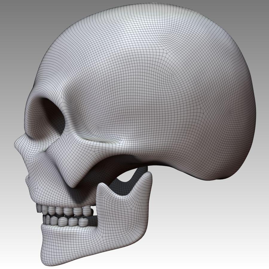 Kafatası royalty-free 3d model - Preview no. 8