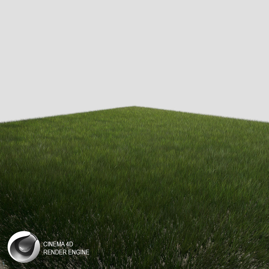 Dynamisch gras (1) royalty-free 3d model - Preview no. 1
