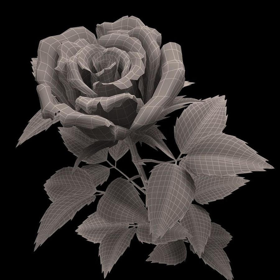 rose red_v_2 royalty-free 3d model - Preview no. 8
